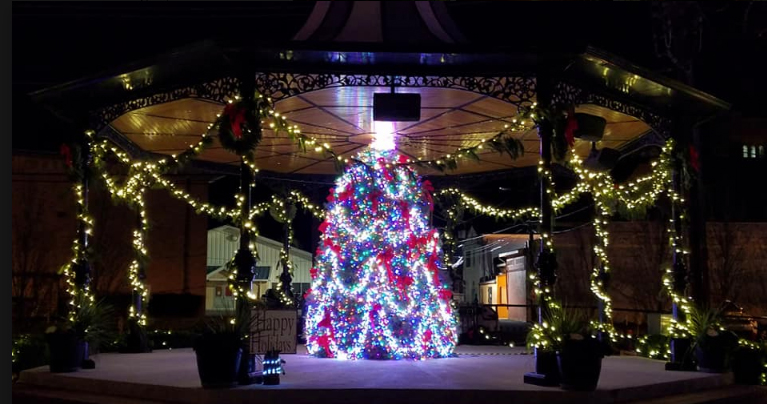 Christmas tree inside the Victorian Band Stand in Cape May, N.J. (Photo courtesy of Robert Driebe)