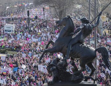 Thousands fill the Benjamin Franklin Parkway near the Philadelphia Museum of Art during the second Women's March on Jan. 20, 2018. (Jonathan Wilson for WHYY)