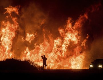 A motorists on Highway 101 watches flames from the Thomas fire leap above the roadway north of Ventura, Calif., in December 2017. Hundreds of homes were destroyed in what was then California's most destructive wildfire. (Noah Berger/AP)