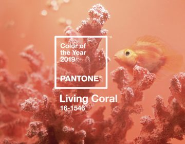 Living Coral is the Pantone Color Institute's color of the year for 2019. The vibrant hue represents