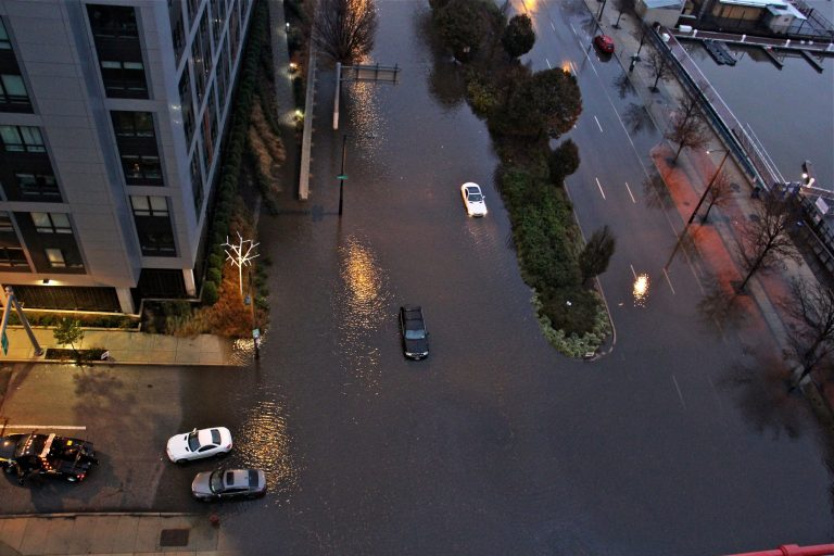 Cars are stranded on Columbus Boulevard in Philadelphia on Nov. 26, 2018, after flooding made the road impassable. (Emma Lee/WHYY)