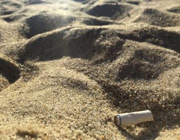 In this Aug. 25, 2018, photo a cigarette butt lies on the sand at  beach in Middletown, N.J. Democratic Gov. Phil Murphy signed the bill banning smoking at the state's public beaches and parks in July, though local communities can opt out and designate small smoking sections. The law takes effect Jan. 16, 2019. (AP Photo/Jenny Kane)