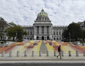 The steps of the Pennsylvania state Capitol are seen on Wednesday, Oct. 31, 2018, in Harrisburg, Pa., covered with an art installation by Michelle Angela Ortiz showing images of young mothers who were held in a facility in Pennsylvania that is one of three family detention centers in the United States that holds children and parents who are seeking asylum or entered the country illegally. (AP Photo/Marc Levy)