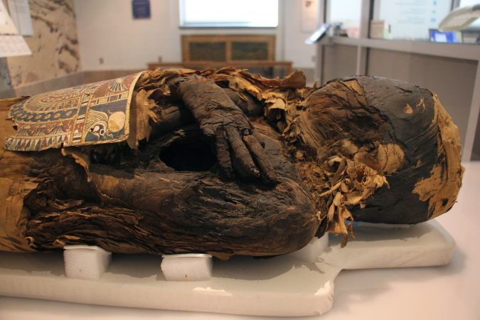 The mummy of Hapimen, a priest of Egypt's Late Period, was ripped open by ancient looters looking for jewelry. Because the mummy was damaged, it is rarely exhibited. (Emma Lee/WHYY)