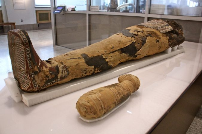 Hapimen, a priest of Egypt's Late Period, was buried with a small dog mummy, believed to have been his animal companion. (Emma Lee/WHYY)