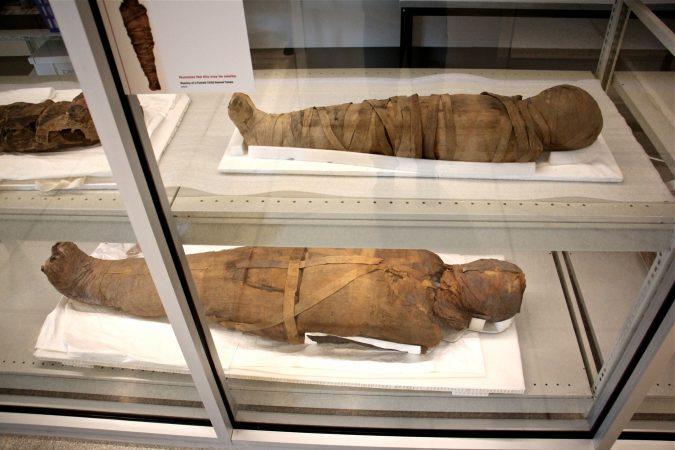 The Penn Museum's new exhibit,