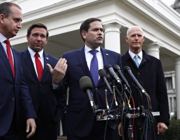 In this Jan. 22, 2019, photo, Rep. Mario Diaz-Balart, R-Fla., (left), Florida Gov. Ron DeSantis, Sen. Marco Rubio, R-Fla., and Sen. Rick Scott, R-Fla., speak to the media after their meeting with President Donald Trump about Venezuela, at the White House in Washington. (Jacquelyn Martin/AP Photo)