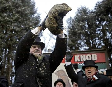 Groundhog Club co-handler John Griffiths, (left), holds Punxsutawney Phil, the weather prognosticating groundhog, during the 133rd celebration of Groundhog Day on Gobbler's Knob in Punxsutawney, Pa. Saturday, Feb. 2, 2019. Phil's handlers said that the groundhog has forecast an early spring. (Gene J. Puskar/AP Photo)