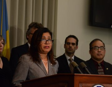 Philadelphia Councilwoman Maria Quiñones-Sánchez talks about the growing problem of home title thefts. (Tom MacDonald/WHYY)