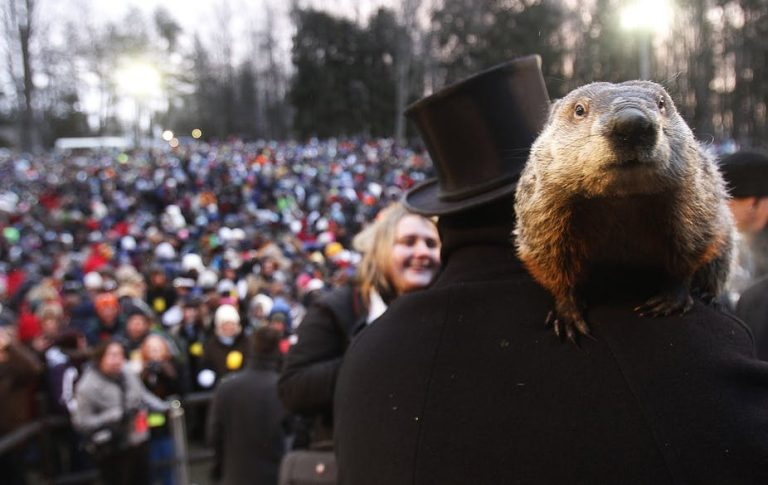 Guys, I'm just trying to hibernate over here. (Jason Cohn/Reuters)