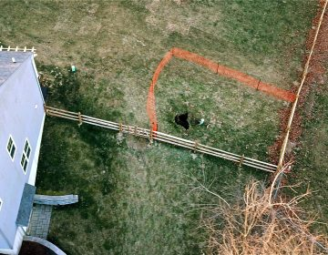 A sinkhole that opened up in January outside a suburban home at Lisa Drive in West Whiteland Township, Chester County, is surrounded by orange plastic fencing.(Eric Friedman)
