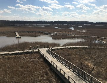 Conservation groups hope to use $4.1 million to preserve and protect areas of the Delaware River Watershed similar to what's been done here along the Wilmington Riverfront and the Christina River. (Mark Eichmann/WHYY)