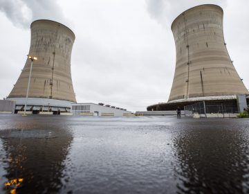 Exelon Corporation Three Mile Island nuclear generating station Unit 1 cooling towers in Londonderry Township, Dauphin County. May 22, 2017. (Dan Gleiter/PennLive)