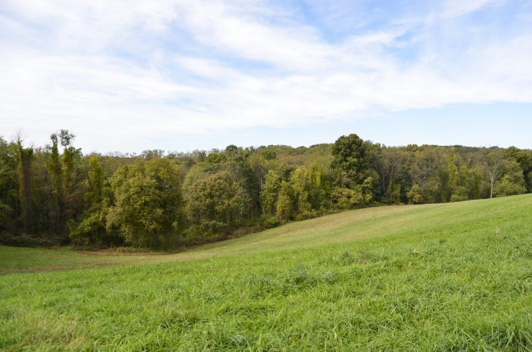 The Allegheny Land Trust manages the Audubon Greenway northwest of Pittsburgh. The organization first acquired a piece of the land in 2003 and has since added to it with a combination of public and private dollars. (Amy Sisk/StateImpact Pennsylvania)