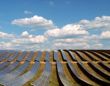 Solar panels fill a field in Provence-Alpes-Cote d'Azur, France. (Panoramic Images/Getty Images)