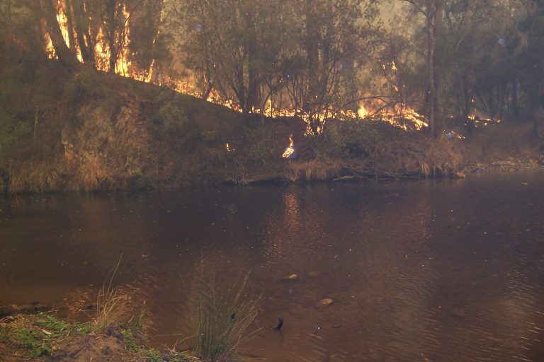 A fire burns along the Howqua River in 2006 in southern Australia's Victoria state. Fire is no stranger in the bush country there. (Graeme Stoney, Mountain Cattlemen's Association of Victoria)