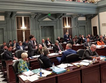 Democrats and Republicans in Delaware debate over legislation that would give Delaware a stronger voice in presidential elections. (Zoe Read/WHYY)
