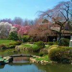 (Courtesy of Shofuso Japanese House & Garden)