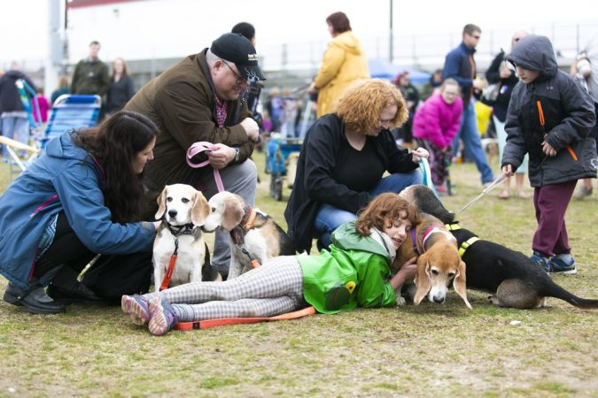 A family participates in the Tri-State Basset Hound Rescue picnic after BoardWaddle on Saturday, April 13, 2019, in Ocean City. (Miguel Martinez for WHYY)