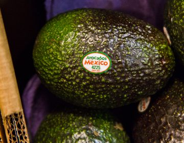 In the event of a Southern border shutdown, produce customers in the region could find themselves paying more or unable to buy the fruits and vegetables they need. (Kimberly Paynter/WHYY)