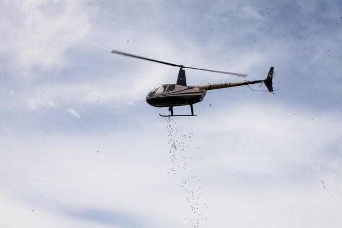 A helicopter dropped thousands of Easter eggs on to the River Fields in Northeast Philadelphia Saturday. (Brad Larrison for WHYY)