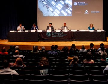 Candidates for Philadelphia City Council At-Large discussed their positions on the environment Wednesday evening at the Academy of Natural Sciences. (Brad Larrison for WHYY)