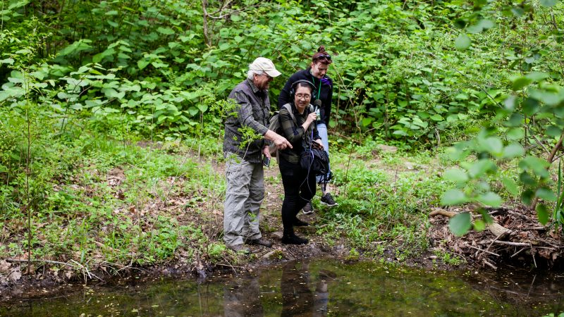 Craig Johnson of Interpret Green and Sadie Francis of Bio Philly show WHYY reporter Ximena Conde wildlife in a small pond during the City Nature Challenge Sunday. (Brad Larrison for WHYY)