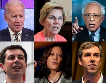 Joe Biden, Elizabeth Warren Bernie Sanders, Pete Buttigeig, Kamala Harris, Beto O'Rourke (AP)