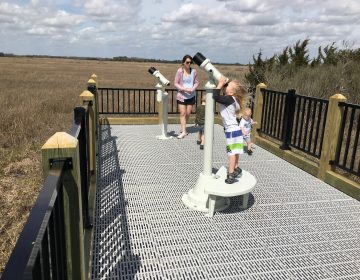 Some young kids take a turn on the mounted binoculars near an osprey nest along the new Slaughter Beach boardwalk. (Mark Eichmann/WHYY)