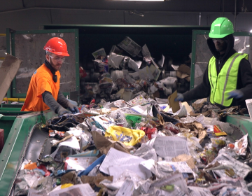 Recycling at J.P. Mascaro & Sons in Birdsboro, Pa. (Kimberly Paynter/WHYY)