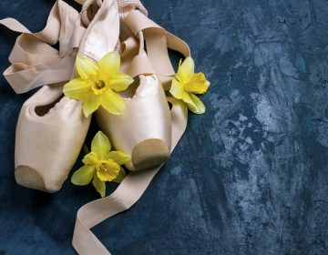Ballerina shoes (Photo Courtesy/BigStock)