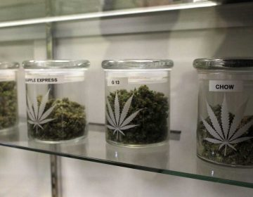 The number of medical marijuana patients has more than doubled in the last year. (Brennan Linsley/AP Photo)