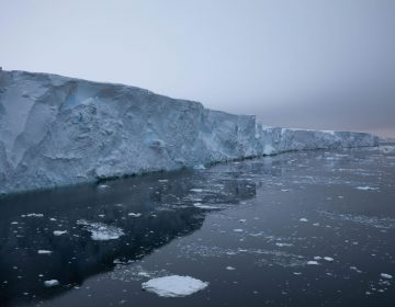 The front face of Thwaites Glacier rises an estimated 60 feet to 75 feet above water in the areas where it is most intact. Roughly 90% of an ice shelf typically sits below the water line. (Carolyn Beeler/The World)