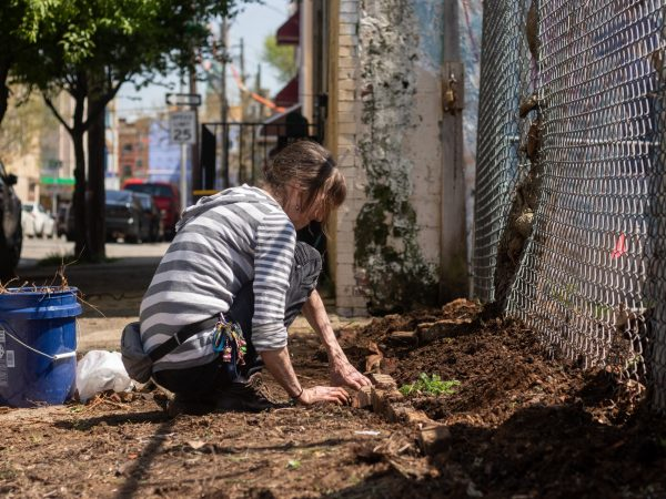 June Vroegindewey, a former volunteer with La Finquita, scatters flower seeds to decorate the new Orkney Street garden. (Angela Gervasi for WHYY)