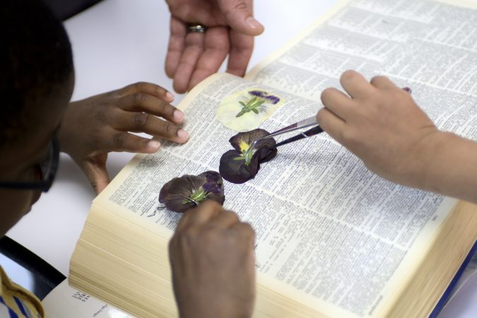 Pre-schoolers prepare pressed flowers for cards at the classroom of the new horticulture center for students who are blind, visually impaired or have other disabilities at the Overbrook School of the Blind, on Tuesday. (Bastiaan Slabbers for WHYY)