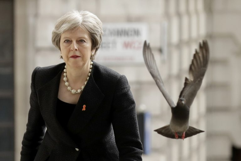 A pigeon takes off as Britain's Prime Minister Theresa May arrives to attend a Memorial Service to commemorate the 25th anniversary of the murder of black teenager Stephen Lawrence at St Martin-in-the-Fields church in London, Monday, April 23, 2018. (Matt Dunham/AP Photo)