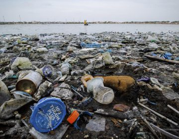 Every year, 8 million tons of plastic flow into the ocean and break down into microplastics. Because many organisms eat them, microplastics have the potential to crash marine ecosystems and leach poisons into our seafood. (Photo by Zikri Maulana / SOPA Images / Sipa USA, via AP Images)