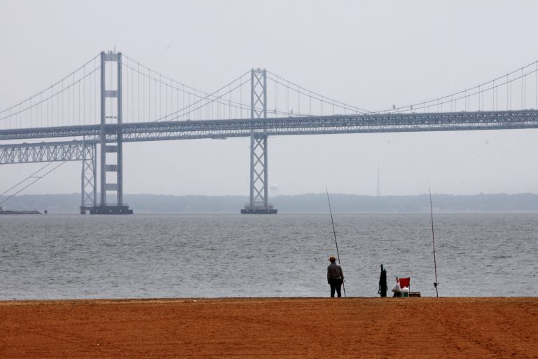 For an annual report card evaluating the 200-mile-long bay, researchers at the University of Maryland Center for Environmental Science on Tuesday, May 21, 2019 gave the Chesapeake a grade of 46% for 2018, down from 54% in 2017. All of the indicators factored into the bay's health index declined or stayed flat last year. (Jacquelyn Martin/AP Photo)