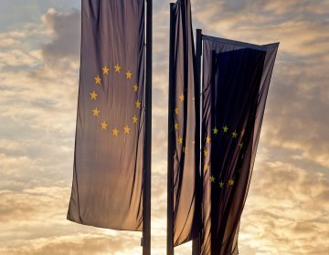European flags blow in front of the European Central Bank as the sun rises in Frankfurt, Germany, Sunday, May 26, 2019. (Michael Probst/AP Photo)