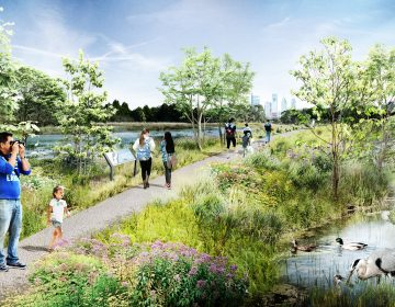 FDR Master Plan: The Wetlands (Provided)