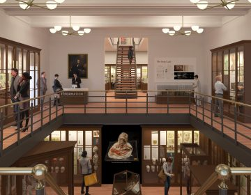 The Mütter Museum is getting a remodel. (Renderings courtesy of KieranTimberlake)