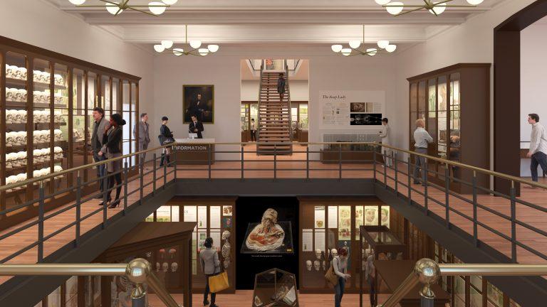 The Mütter Museum is getting a remodel. (Renderings courtesy of KieranTimberlake)