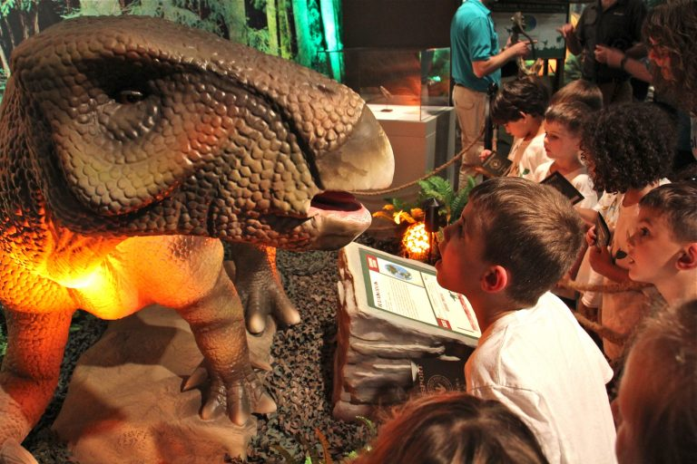 Gavin Fisher, 5, peers into the mouth of an animatronic iguanodon at the Academy of Natural Sciences'