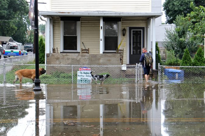 Michael Hess leads his dogs home through the floodwaters on Broadway in Westville, N.J. (Emma Lee/WHYY)