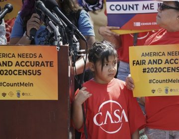 Immigration activists rally outside the Supreme Court as justices hear arguments over the Trump administration's plan to ask about citizenship on the 2020 census. (J. Scott Applewhite/AP Photo)