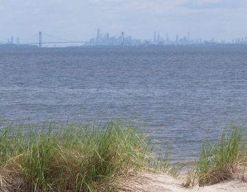 In this June 3, 2019 photo the New York City skyline is in the background of the Raritan Bay as seen from Middletown, N.J.  New Jersey environmental officials are due to decide Wednesday, June 5 on key permits for a nearly $1 billion pipeline that would bring natural gas from Pennsylvania through New Jersey, out into Raritan Bay and into the ocean before reaching New York and Long Island. (Wayne Parry/AP Photo)