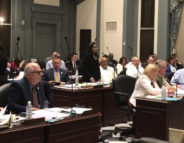 Delaware lawmakers worked into the overnight hours of July 1 to finish their legislative work for the year. (Cris Barrish/WHYY)