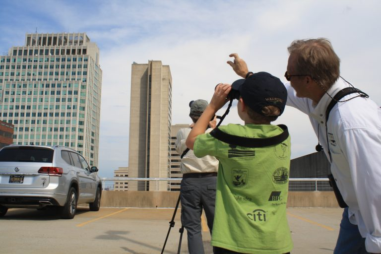 Bill Stewart of the Delaware Ornithological Society shows a young bird watcher where to see a falcon roosting on top of a building in downtown Wilmington. (Mark Eichmann/WHYY)