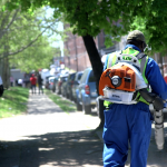 The city's street sweeping pilot in June 2019. (Kimberly Paynter/WHYY)