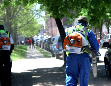 Philadelphia's street sweeping pilot program has started, but some sweepers are unable to go down narrow streets. (Kimberly Paynter/WHYY)